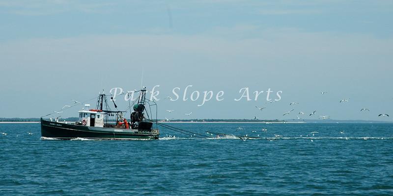 Summer Sailing-0139.jpg