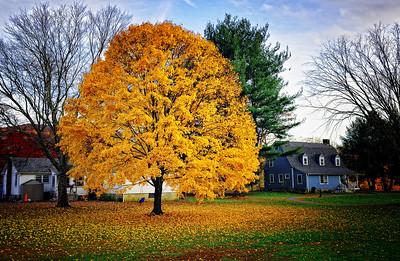 Kent, CT Fall '09