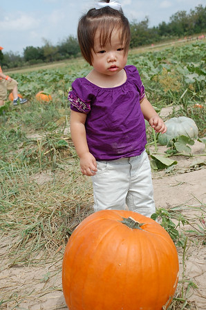 October 12, 2008 - Playing in the Pumpkin Patch and Corn Maze at Dewberry Farm