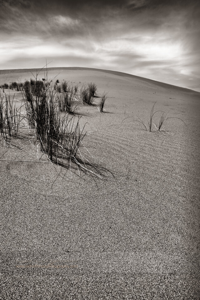 Bruneau sand dunes Idaho,Black and White Fine Art.