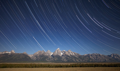 Star trails with coyote.