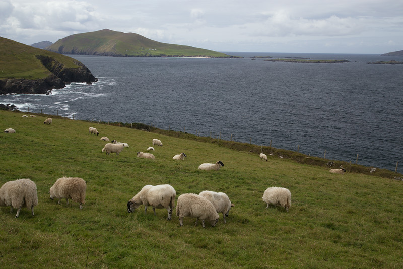 Dingle Penninsula, County Kerry.