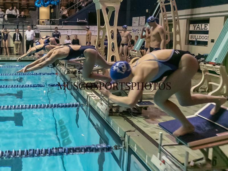 Swimming-diving vs Seton Hall_1458.jpg