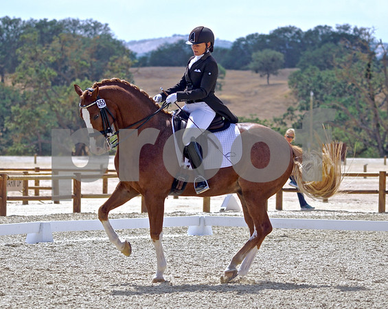 Paso Robles Dressage Show June 2016