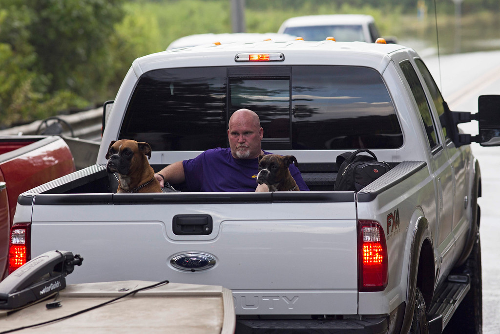 . Residents take pets and belonging out of their homes in the flood hit areas around Walker, La., Monday, Aug. 15, 2016. (AP Photo/Max Becherer)