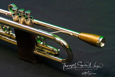 MY TRUMPET COLLECTION