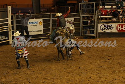 Bull Riding Tues 15th