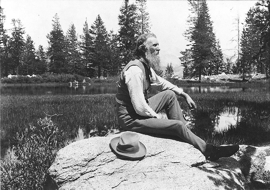 . John Muir, c1902. The last 25 years of Muir�s life were consumed with constant travel, writing, and oversight of the Sierra Club�for which he served as president from its creation in 1892. He lobbied successfully for the creation of Yosemite Park in 1890 and then asked for additional protections when he toured President Theodore Roosevelt in the park in 1903. Muir�s persuasive words to Roosevelt and state authorities led to the return of Yosemite Grant to the federal government in 1906. His published writings were also instrumental in the creation of Grand Canyon and Sequoia national parks. Photo from the Library Of Congress