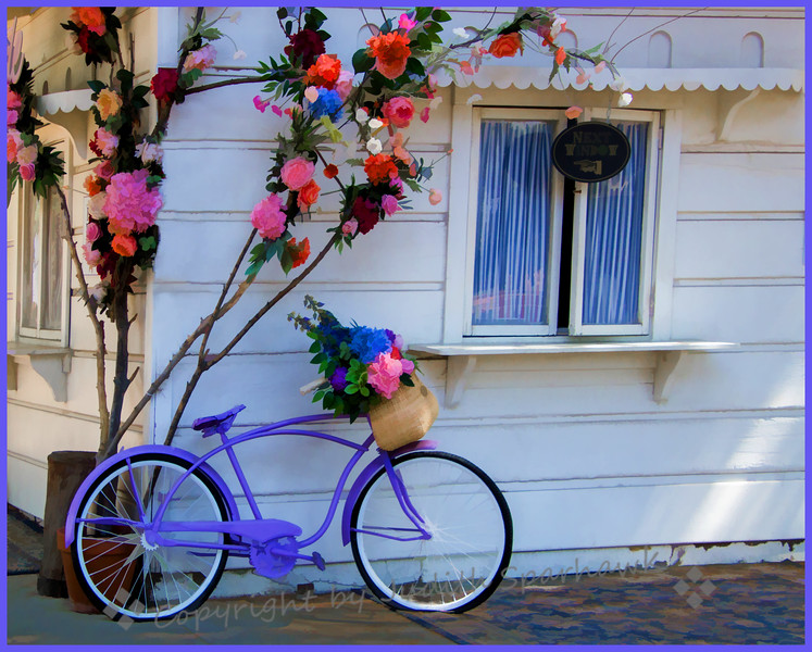 The Lavender Bicycle - Judith Sparhawk