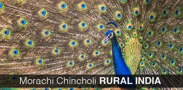 Morachi Chincholi an agro tourism farmstay near Pune, Maharashtra, India