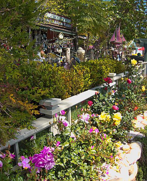 laguna garden cafe.jpg