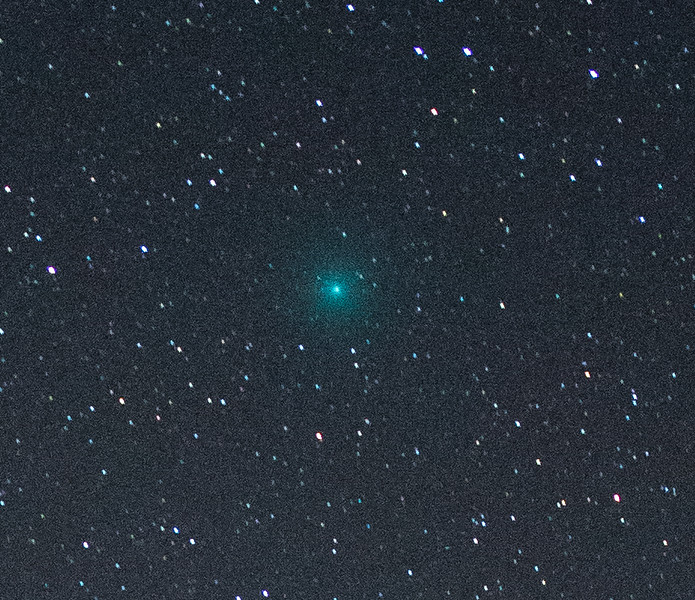 Comet 46P Crop.jpg