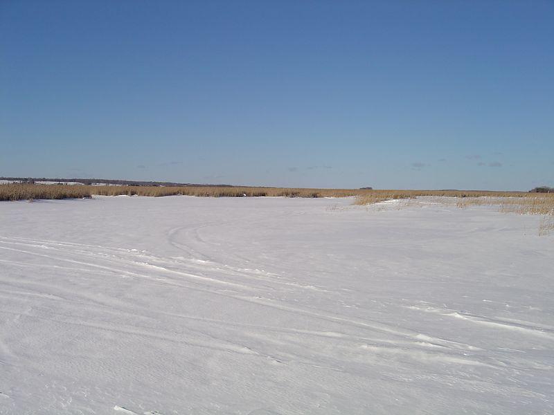 Frozen Lake -- Pigeon Lake ON