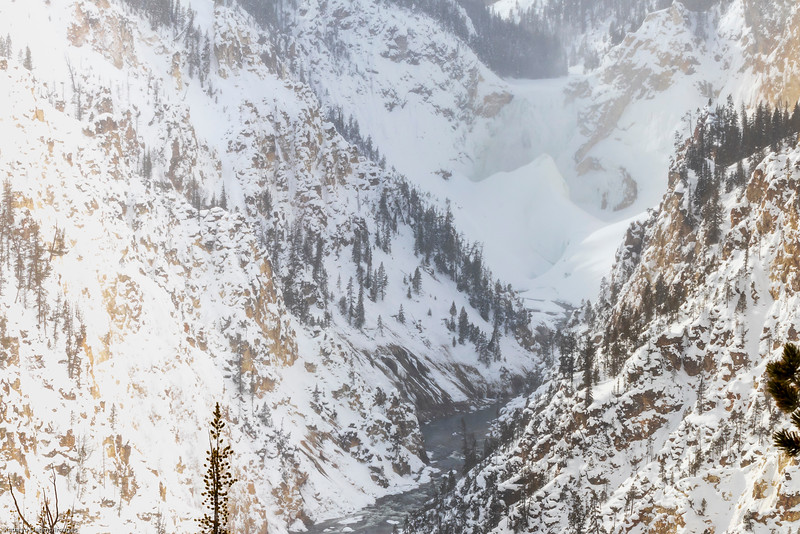 Yellowstone in winter-9945sm.jpg