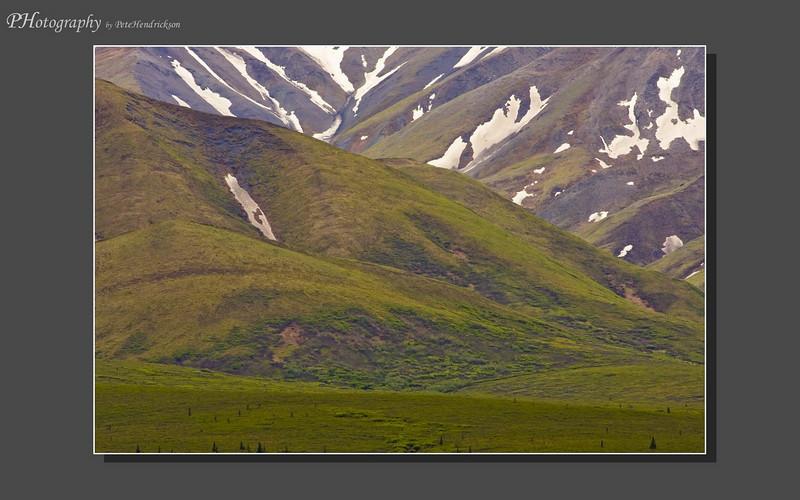 My Alaska 12-08-077.jpg