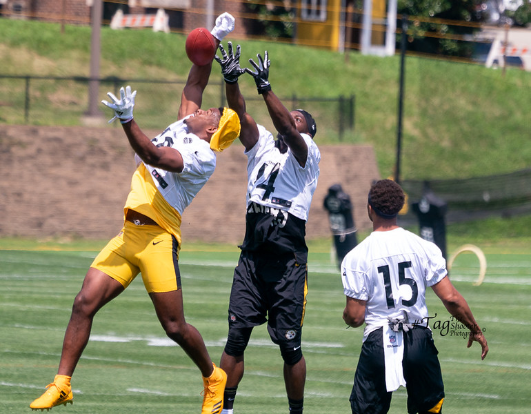 Day1SteelersCamp2019-05270.jpg
