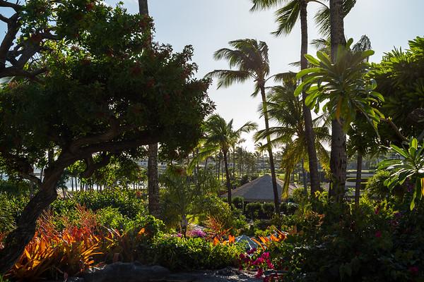 Hawaii November 2018
