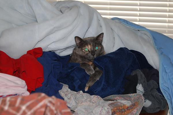 Kiara -- we love you & miss you -- Jan. 7, 1998 - April 17, 2009