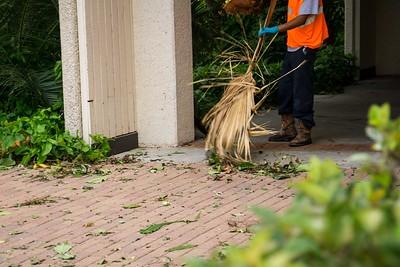 Harvey-Campus Damage
