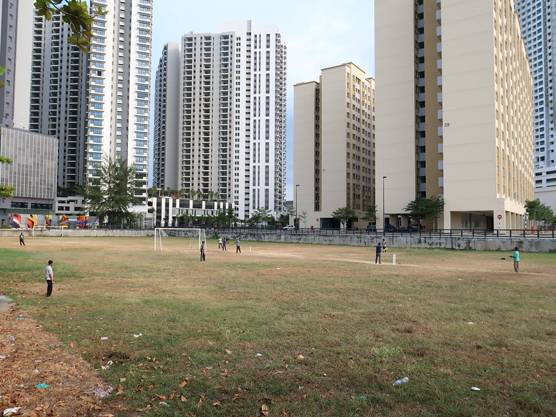IMG_2429-cricket-players.JPG