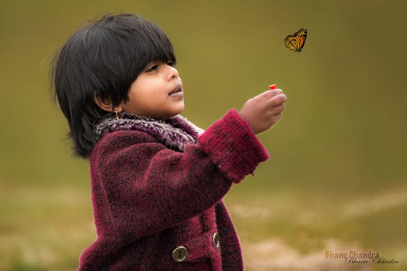 Hanu_Butterfly Green.jpg