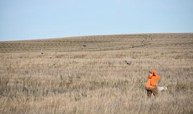 South Dakota - Wild Prairie Lodge
