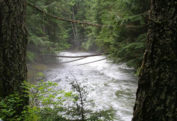 Brandywine Falls - Whistler