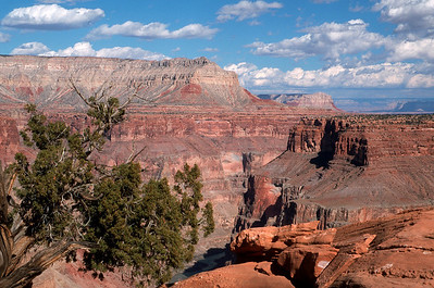 Grand Canyon/Toroweap