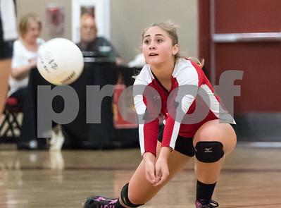 Lodi High 2017 Volley Ball Highlights