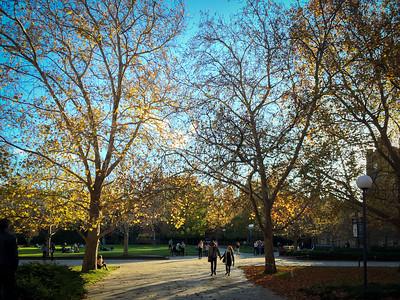 University of Melbourne 2015-2017