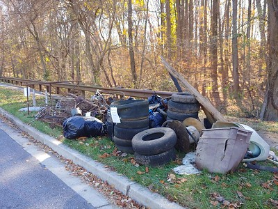 11.16.2019 Mardella Run Cleanup with Greater Patapsco Community Association