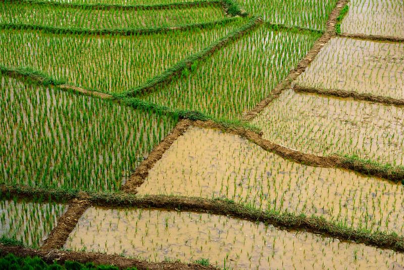 160222 - Bali - 3584.jpg