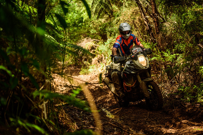 2018 KTM New Zealand Adventure Rallye - Northland (770).jpg