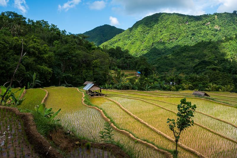 160222 - Bali - 3586.jpg