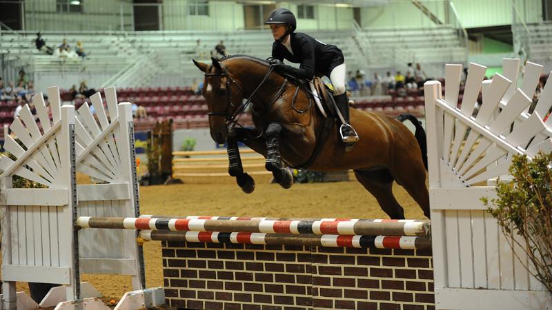 Horse show (28).jpg