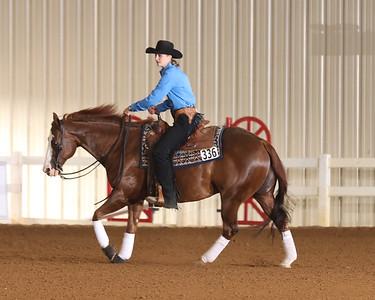 Wed Nov Horse Open