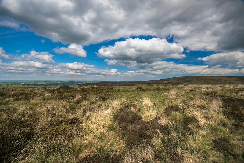 Dartmoor – High Moors