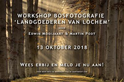 2018-10-13 Workshop bosfotografie (Dutch)