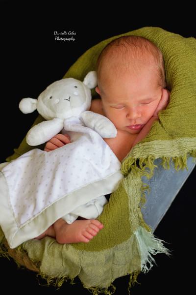 _4_website_newborns-46.jpg