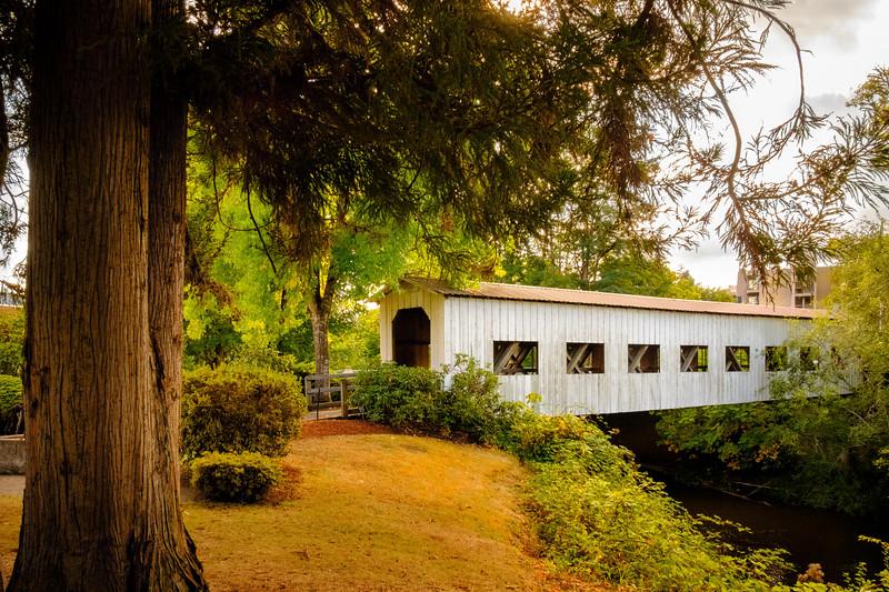 Centennial Covered Bridge_DSF7860.jpg