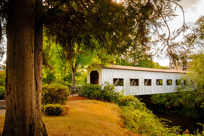 Covered Bridges of Cottage Grove, Ore.