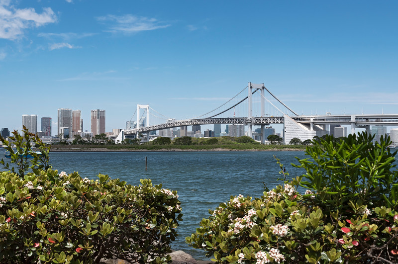Rainbow Bridge and surrounding Tokyo Bay as seen from Odaiba (Daiba), Japan