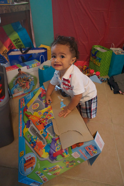 LINCOLN 1st BIRTHDAY PARTY_ 258.jpg