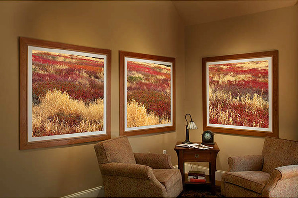 Family Room 0250 4051 2 3f 250.jpg
