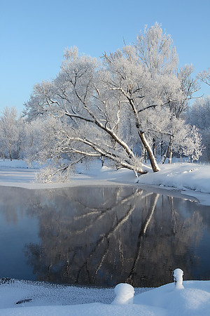 Winter Fairytale / Зимняя сказка