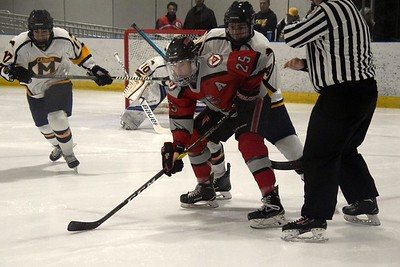 HS Sports - Cabrini at Divine Child Hockey