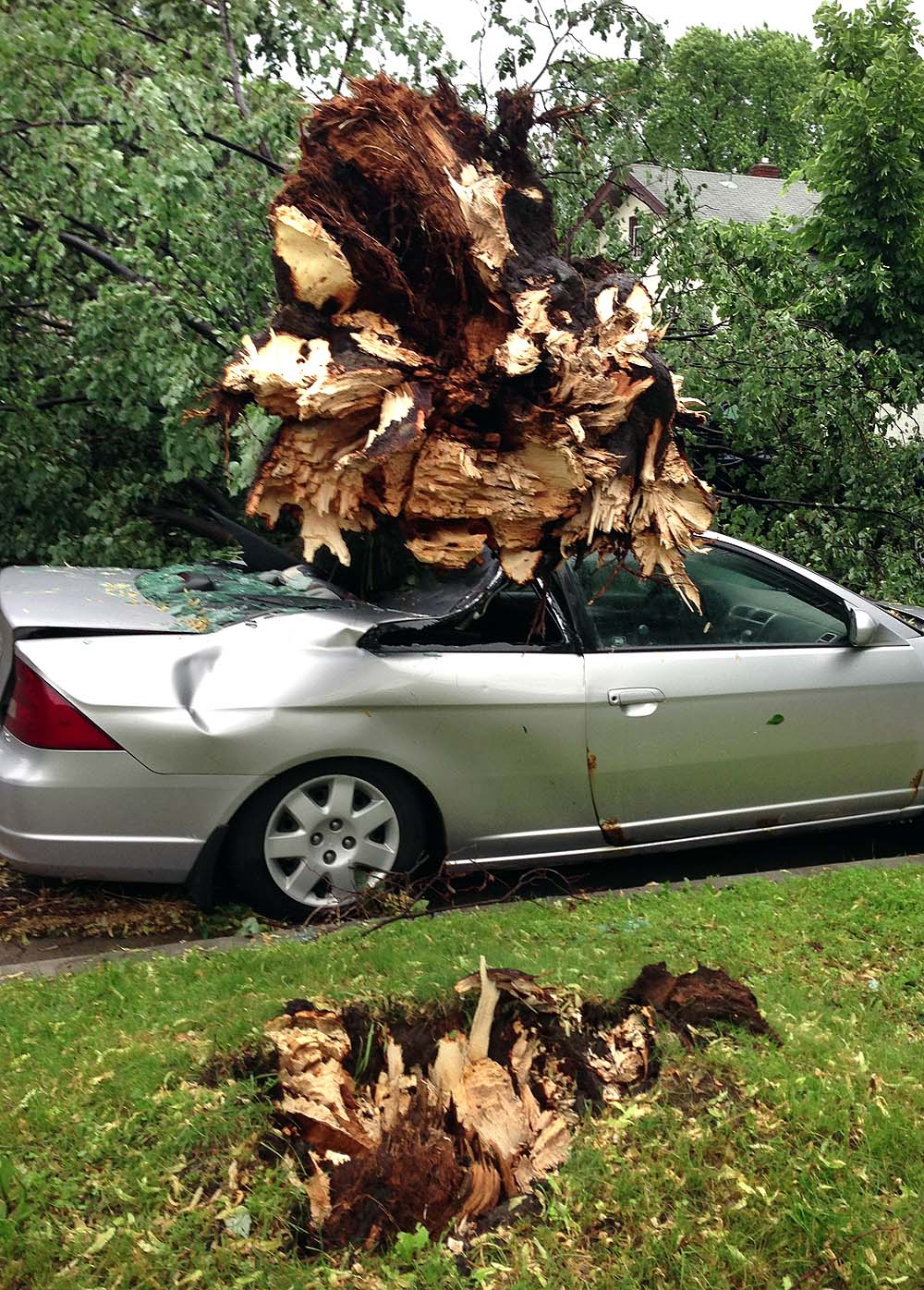 . A huge tree snapped off and landed on a nearby car on Brimhall Street in St. Paul. (Photo courtesy Sara Kerr)
