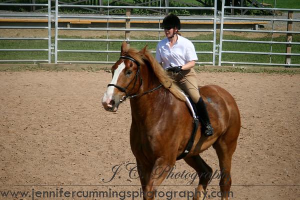 Novice - Equitation, Pleasure, Show Hack