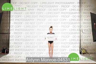 Aidynn Monroe