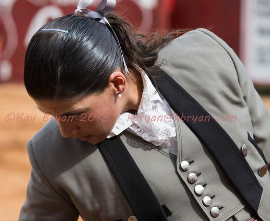 Bullfighting 2013